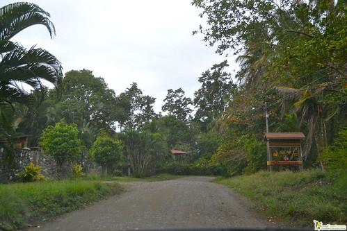 Roads of Cahuita