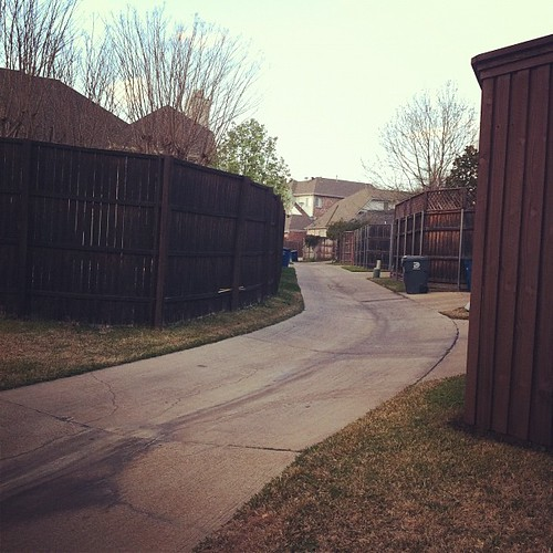 {Day 3: Neighborhood} I'll never live in a #neighborhood sans alleyway again -love me an alley! #marchphotoaday