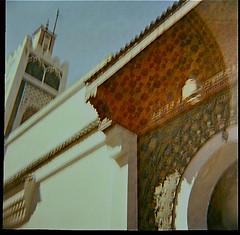 Morocco Diana F+