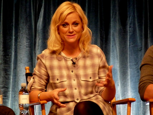 Amy Poehler wearing a plaid shirt.