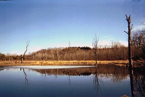 ny pond mendon falls beaver honeoye
