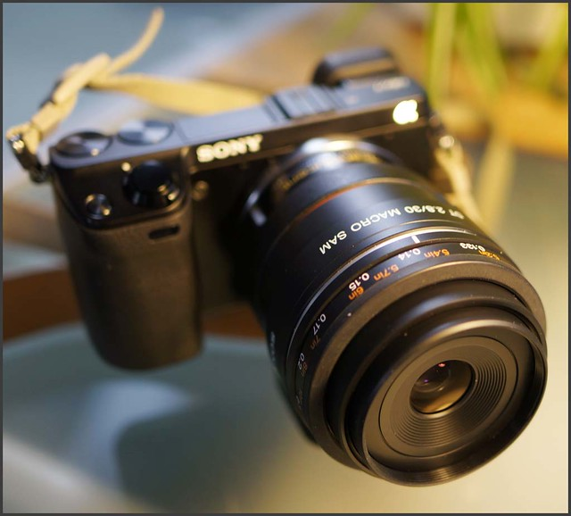 Sony NEX-7 a-mount 30mm f/2.8 macro lens LA-EA2 mirrored adapter.