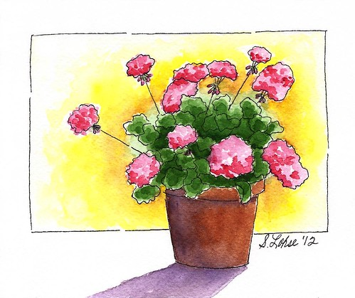 Pink Geraniums, ink and watercolor