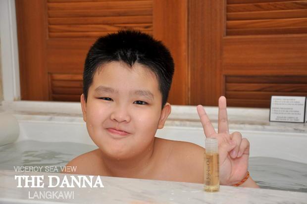 The Danna Langkawi 15