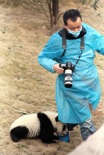 The babies would not leave the photographer alone.