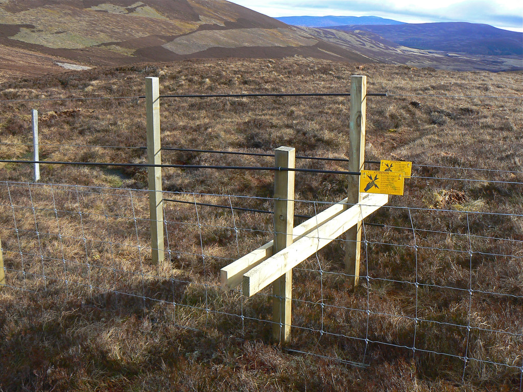 Electric Fence Crossing