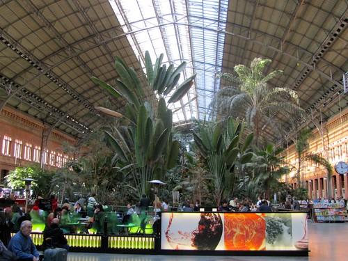 Il giardino tropicale di atocha nella stazione di madrid - Giardino tropicale ...