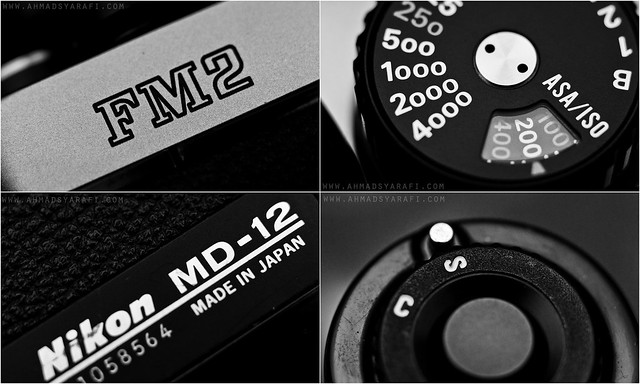 Nikon FM2n Close Up Shot