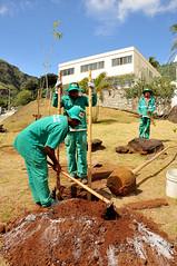 07/03/2012 - DOM - Diário Oficial do Município