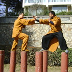 WWW.SHAOLININDIA.COM Shaolin Kung Fu India
