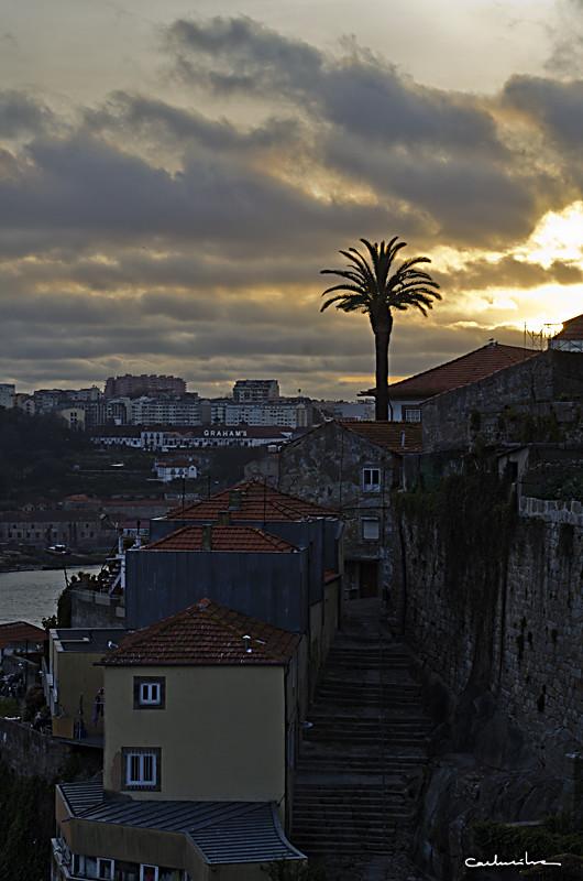 Porto'12 0959