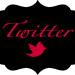 TwitterIcon2