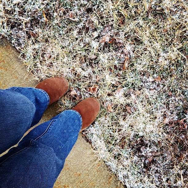 41/365+1 Sprinkling of Snow #fromwhereistand