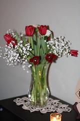 Valentine's day 201208