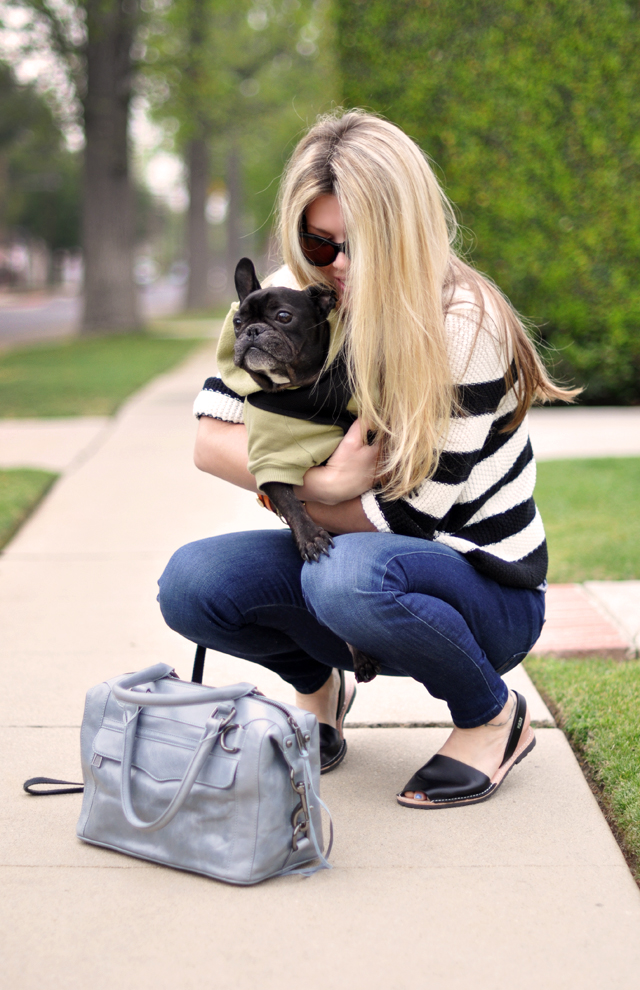 French bulldog-rebecca minkoff bag-striped sweater-avarcas