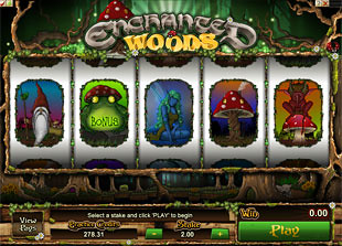 Enchanted Woods slot game online review