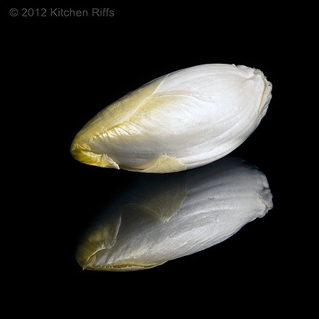 Whole Belgian Endive on Black Acrylic