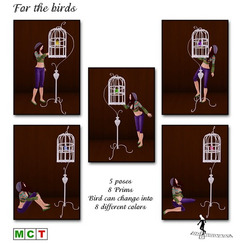 For the birds - COMING SOON for the POSE FAIR
