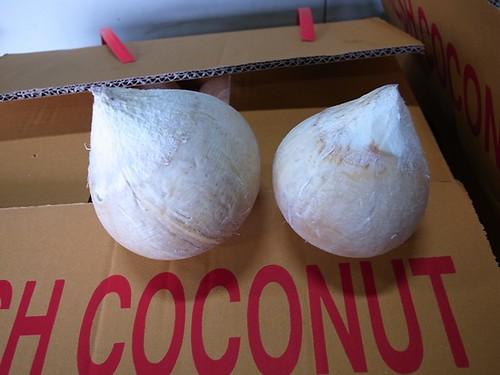 泰國香水椰子 24顆裝與40顆裝之比較