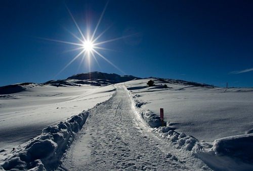 Winterway to the sun