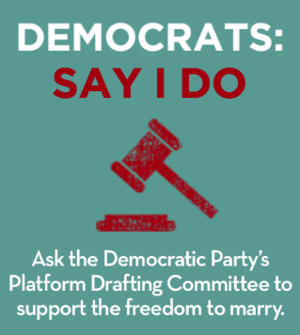 say-i-do-dems-image.png