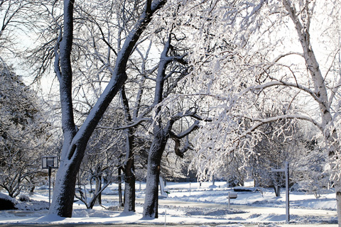 winter3-0312