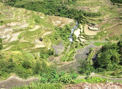Luzon-Banaue (68)