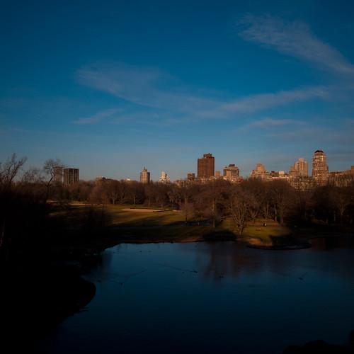 Central Park Shine