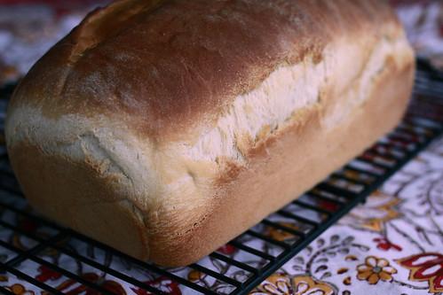 American Sandwich Bread-1
