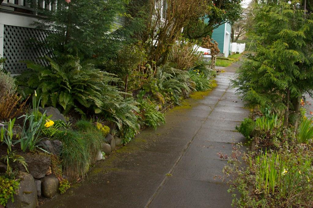 side garden  1318
