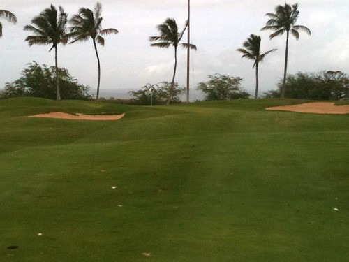 Hawaii Prince Golf Club 394