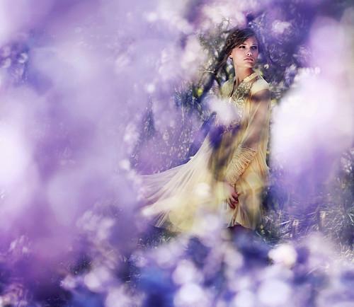 Awaken, spring. by alexstoddard