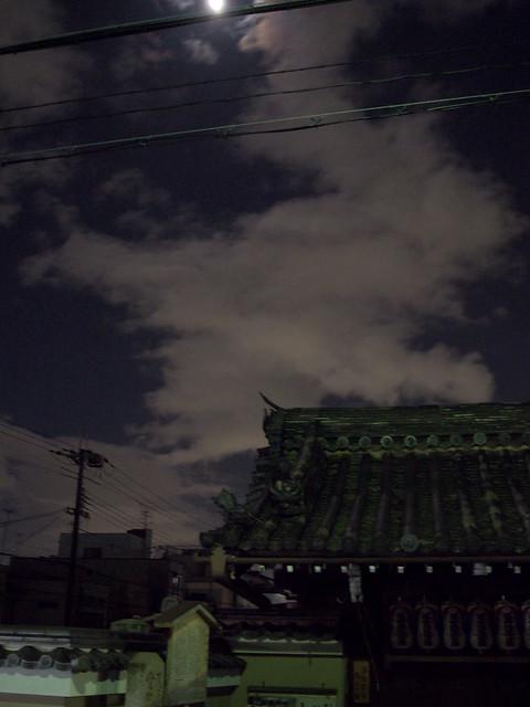 月夜の徘徊