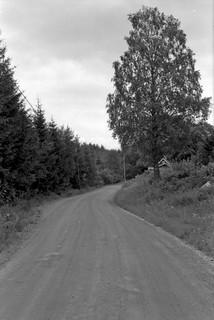 Svensk sommar 1978 - 35