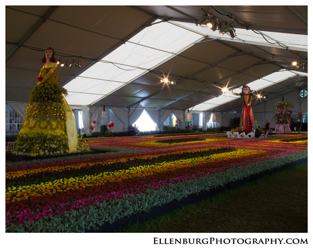fb 120330 Festival of Flowers-19