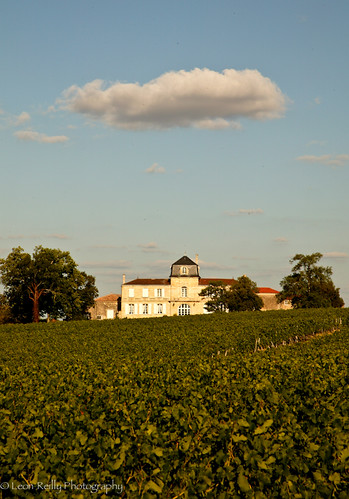 Chateau Gigault, Blaye, Bordeaux