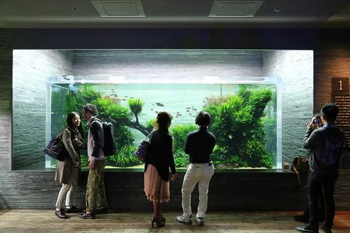 sumida_aquarium03