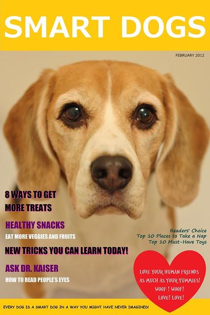 Smart Dogs Magazine