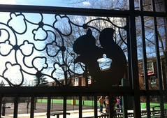 Squirrel image in fence