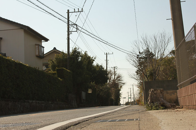 20120311_伊予ヶ岳_0090