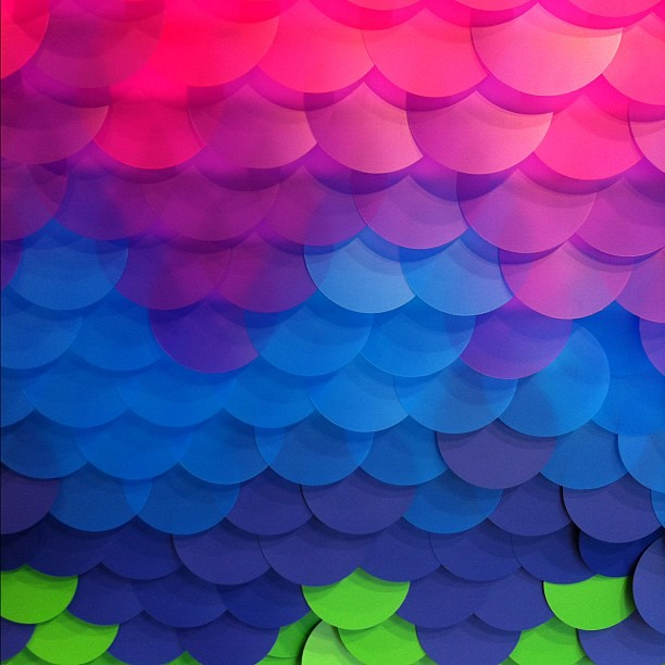 Rainbow Fish Scales Fish Scales Picaday