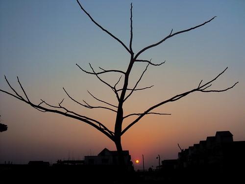 city pink sunset dhaka bangladesh sajan164