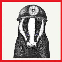 Badger in Miners Helmet