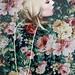 flowerin'  by Anastasia Autumn