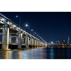 난생처음 한강다리 야경에 도전. 한강 근처에 산게 몇년인데 이제야 오다니.. 여유 좀 갖고 살아야겠다.  #progom #옥곰랜드 #Nightview #Landscape #journey #Bridge #Seoul #South_Korea #Canon #EOS #1DMarkIII #squaready