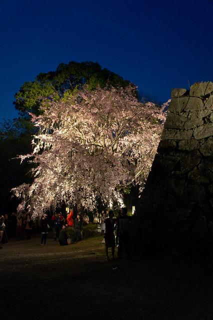 2012-kyushu-346