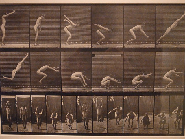 PDX art museum 6