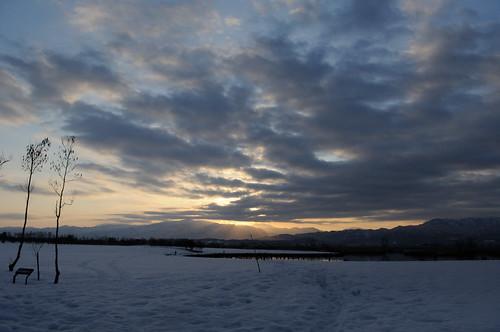 winter snow japan sunrise dawn niigata 2012 fukushimagata 福島潟
