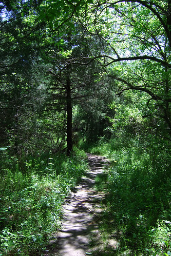 Picture of the Sac River Trail in summer