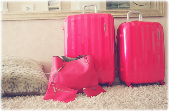 July, 2017 | Luggage And Suitcases - Part 19